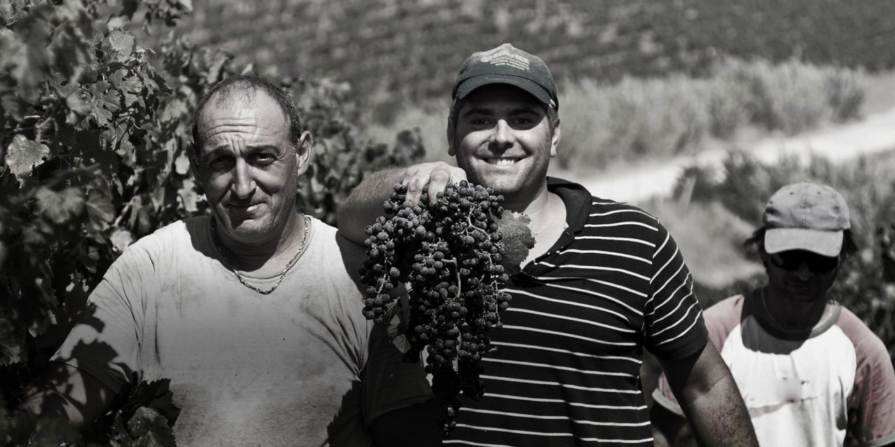 Cantine Ermes, makers of Pinot Grigio Road