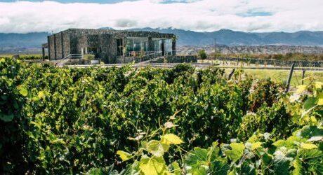 Estancia Los Cardones Winery