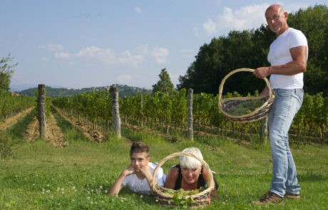 Tiare Vineyard